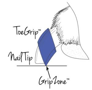 ToeGripsの仕組みの写真の画像