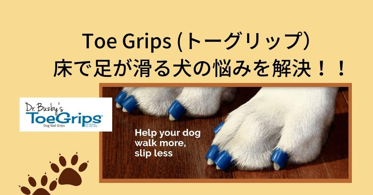 toe gripアイキャッチ画像