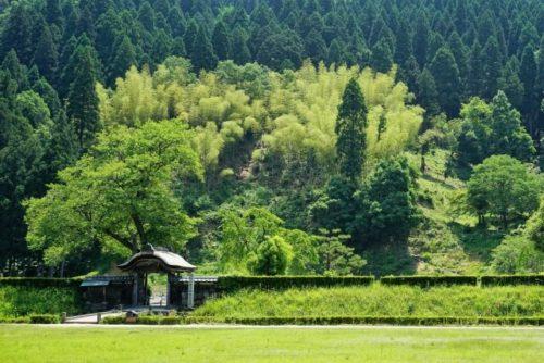 image of Fukui City Ichijodani