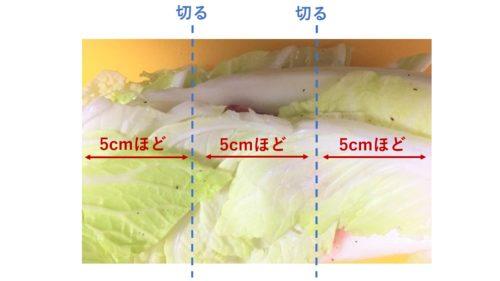 白菜豚切り方
