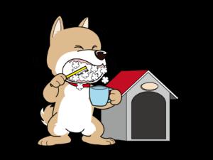 犬が歯磨きをしている画像