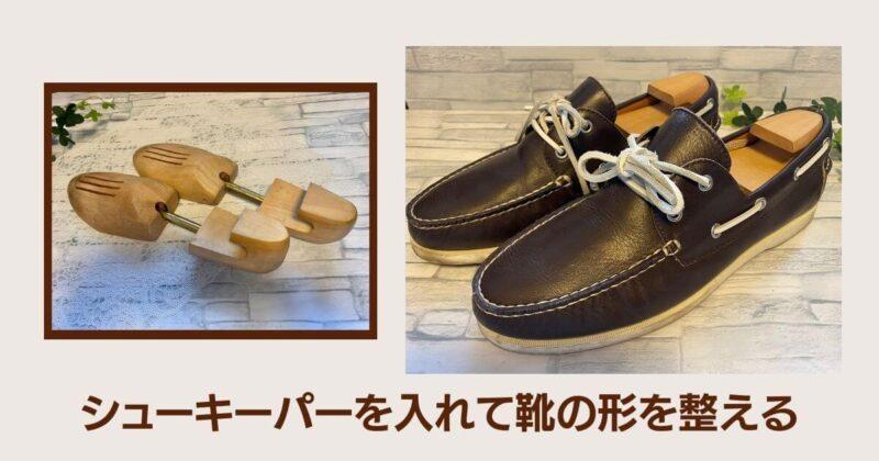 シューキーパーを入れて革靴の形を整える