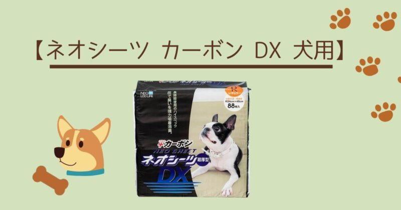 ネオシーツ+カーボン DX・アイキャッチ
