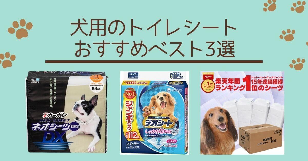 犬用のトイレシートおすすめベスト3選アイキャッチ