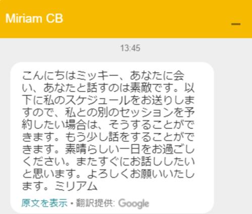 ⑭ Google翻訳をかけたチャットの文章