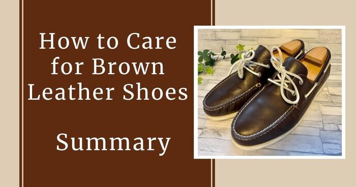 Summary of how to take care of brown shoes